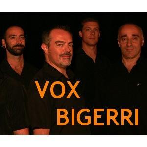 Vox Bigerri