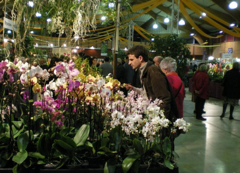 L'exposition internationale à l'Union en 2010 (Photo : Dépêche du Midi)